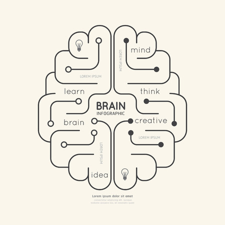brain and thinking: Flat linear Infographic Education Outline Brain Concept.Vector Illustration. Illustration