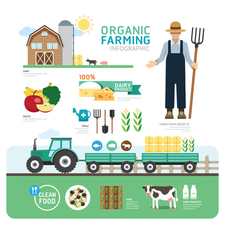 granja: Organic Clean Alimentos buena plantilla Salud Diseño Infografía. Concepto de ilustración vectorial Vectores