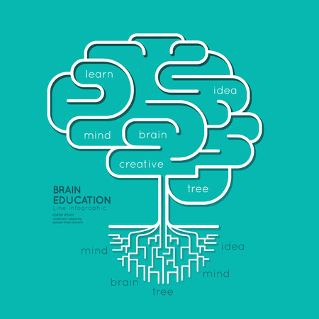 Flat linear Infographic Education Outline Brain Roots Concept.Vector Illustration. Illustration