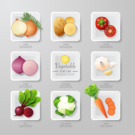 lay: Infographic food vegetables flat lay idea. Vector illustration hipster concept.can be used for layout, advertising and web design. Illustration
