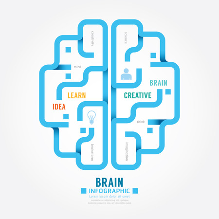 infographics vector blue paper brain design diagram line style template