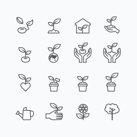 seed pots: plant and sprout growing icons flat line design vector