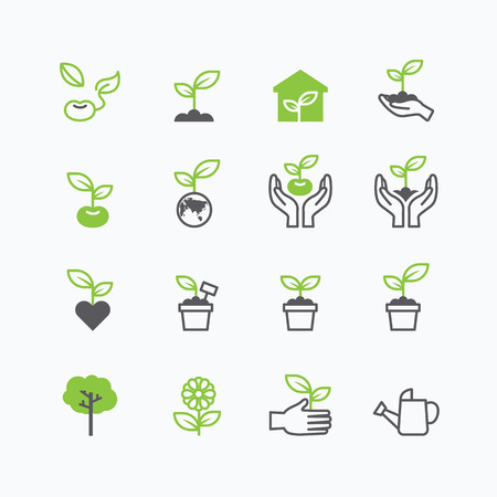 greenhouse and ecology: plant and sprout growing icons flat line design vector