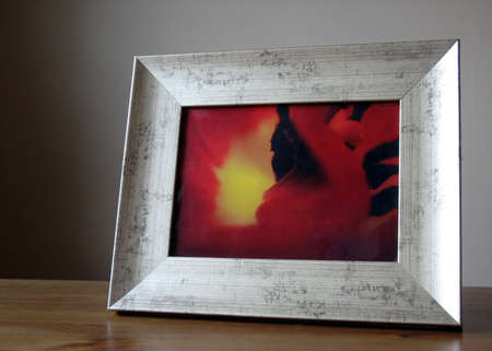 Framed photo actually showing the inside of a tulip. The photographer of this picture has also taken the picture in the frame.