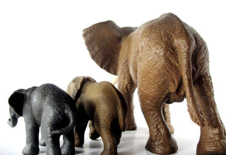 Elephant backsides for weight loss or unhealthy living