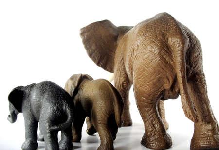 obesidad infantil: Elephant espaldas para la p�rdida de peso o insalubres de vida  Foto de archivo