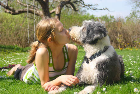 Girl and dog, bearded collie, in love