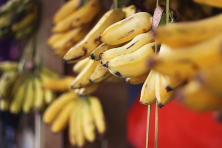 Hanging bananas in the market with depth Stock Photo