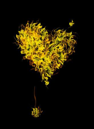Flaming Heart Stock Photo - 4268480