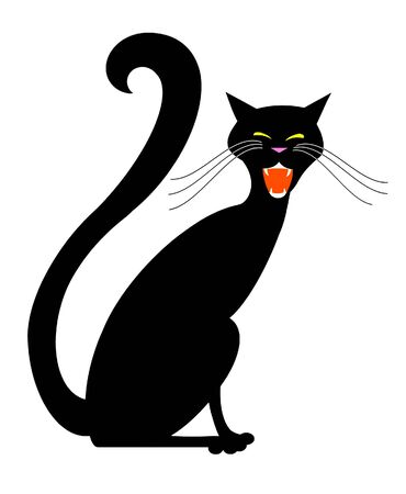 Black hissing cat isolated on white