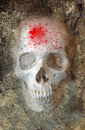 gamers: Scary Skull With Blood Spray Embedded in Rock