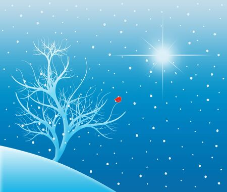 Winter scene of a snow-covered tree with a red bird under a bright star Stock Photo - 7788598