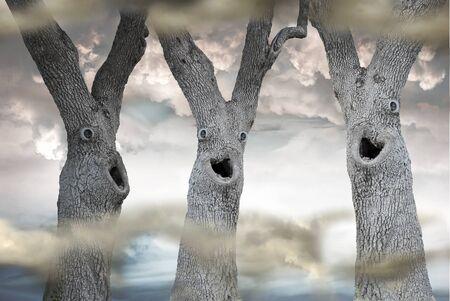 Drie bomen met grappige eng gezichten in een mistige bos