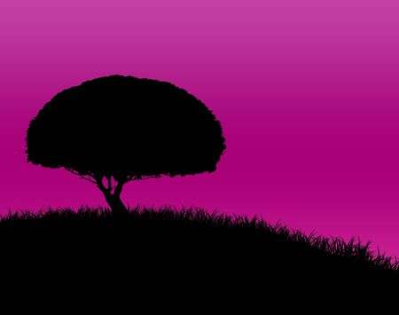 Silhouette of a round tree on a grassy hlllside against a pink sky