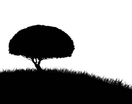 Silhouette of a round tree on a grassy hlllside isolated on white