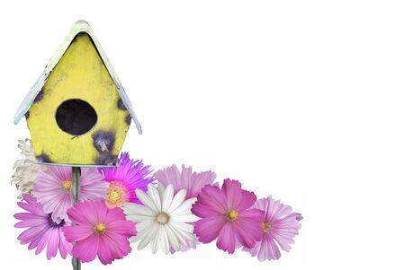 Cheerful summer border of a painted bird house surrounded by flowers isolated on white