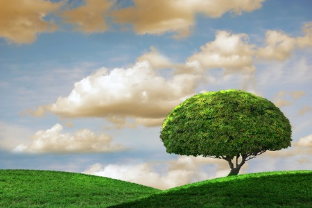 Beautiful outdoor vista with rolling hills and tree Stock Photo