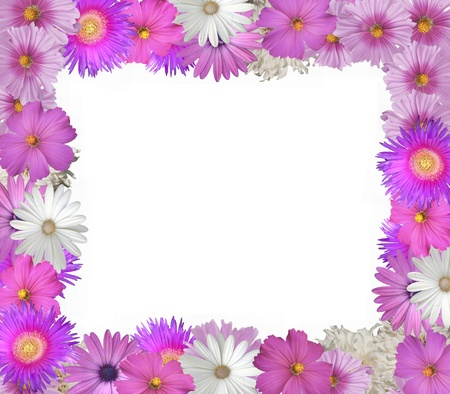 Pretty frame or border of pink and white spring and summer flowers pretty frame or border of pink and white spring and summer flowers stock photo picture and royalty free image image 12726389 mightylinksfo