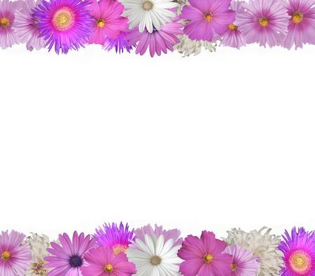 Enthousiaste frontière de fleurs roses et blanches en haut et en bas Banque d'images - 12726388