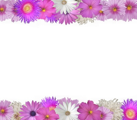 Vrolijke grens van roze en witte bloemen boven-en onderkant