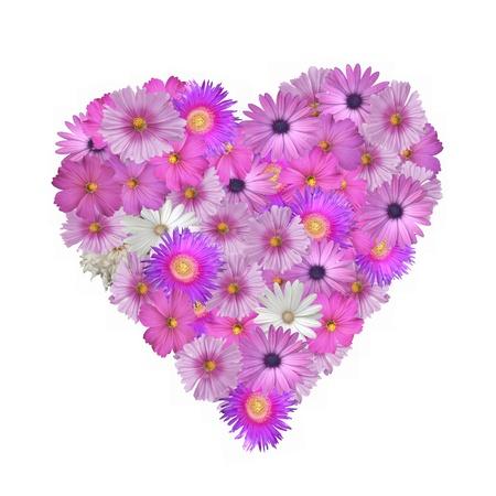 Mooie roze bloemen in de vorm van een hart op een witte