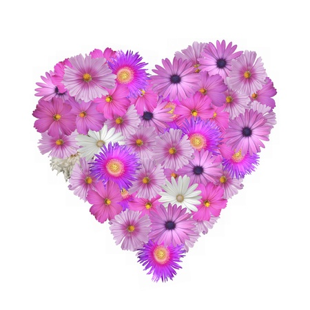 Pretty pink flowers in the shape of a heart isolated on white