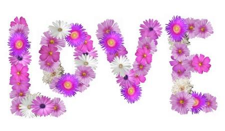 Het woord Liefde uiteengezet in roze en witte bloemen