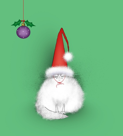 miffed: Funny white cat angry at being forced to wear a silly Santa hat