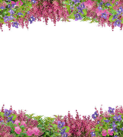 Pretty border or frame of spring violets, pansies, and coral bells