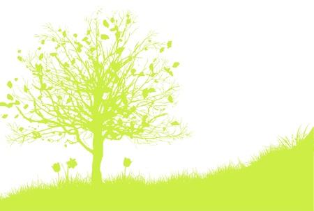 Season Spring