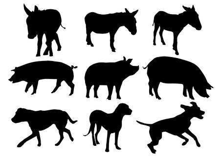 Landbouwhuisdieren Stock Illustratie