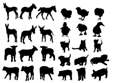 Animales de granja de bebé Ilustración de vector