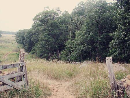 Het Korenveld Pa