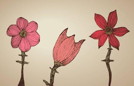 Hand getekende bloemen