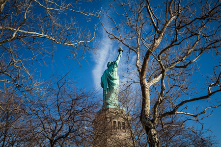 icone: Back of The Statue of Liberty, New York, United States of America, NY, NYC, USA