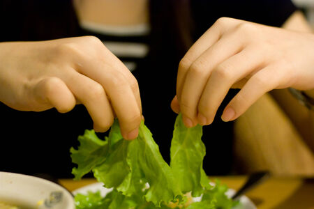 woman hands are shreding salad