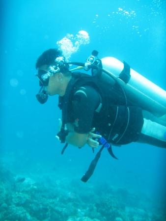 under sea photo