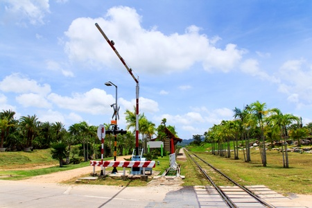 Railway line passing through the green plants Stock Photo - 21805196