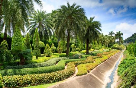 modern garden photo