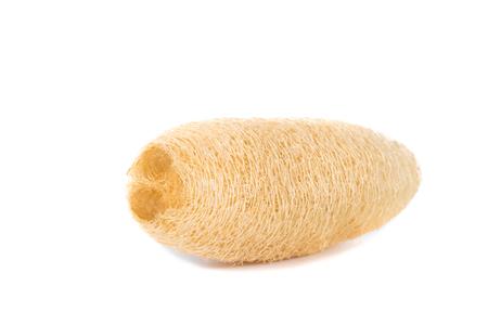luffa: Dry Luffa, luffa sponge on white background, isolated with soft shadow on white background Stock Photo