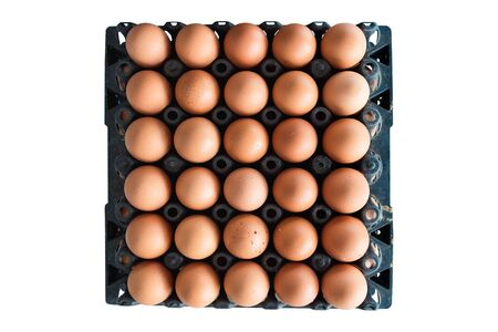 Eggs from chicken farm in the package that preserved for sale, isolated on white background Stock Photo