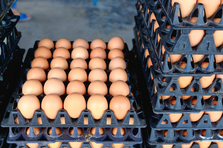 Eggs from hen farm in the package that preserved for sale in wholesale market. Stock Photo