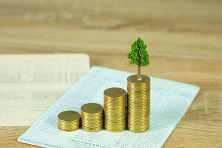 Tree growing on pile of golden coins and account book or credit cart, growth business finance investment and Corporate Social Responsibility or CSR practice and sustainable development concept idea.
