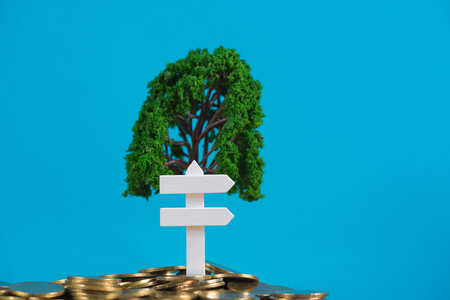 Tree growing on pile of golden coins and white wooden board sign, growth business finance investment and Corporate Social Responsibility or CSR practice and sustainable development concept idea.