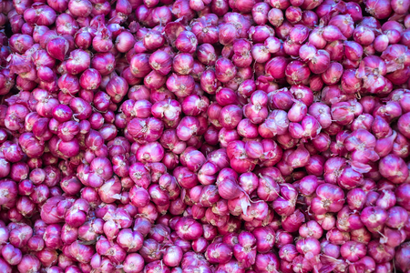 Shallot or Allium ascalonicum L. in local market. Allicin and n-propyl disulphide. vegetable. Stock Photo