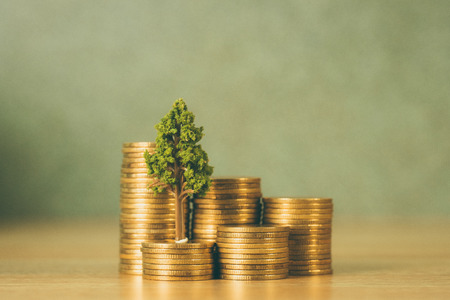 Tree growing on pile of golden coins, growth business finance investment and Corporate Social Responsibility or CSR practice and sustainable development concept idea. Banque d'images