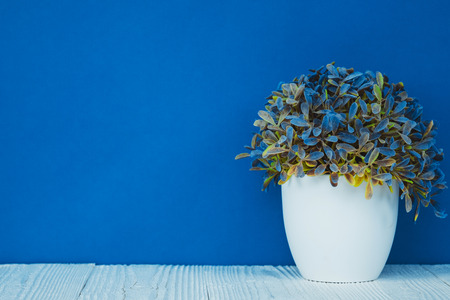 Little decorative tree and flower bouquet in white vase on wooden table with copy space. background.