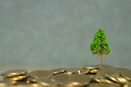 Tree growing on pile of golden coins, growth business finance investment and Corporate Social Responsibility or CSR practice and sustainable development concept idea. Standard-Bild
