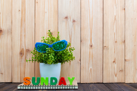SUNDAY letters text and notebook paper, alarm clock and little decoration tree in white vase on wooden background, hello Sunday weekend concept idea