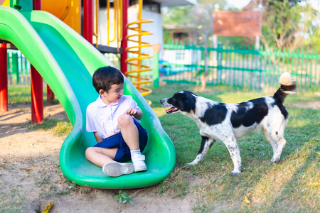 Asian boy playing with his dog in playground under sun light in summer.